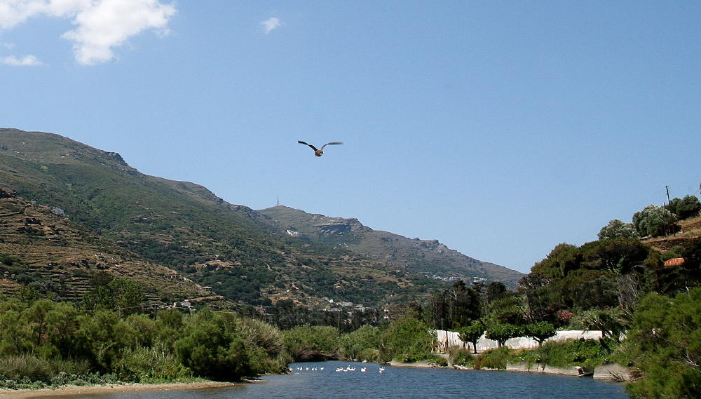 life-andros-vanglouk-androsfilm_2-2