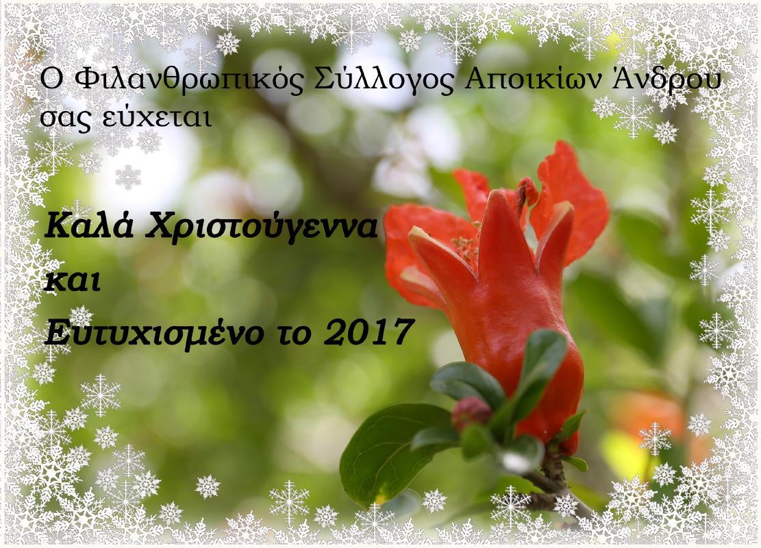 filanthropikos-sylogos-apoikion-%ce%b4%ce%b5%ce%ba-2016-vanglouk-androsfilm-7